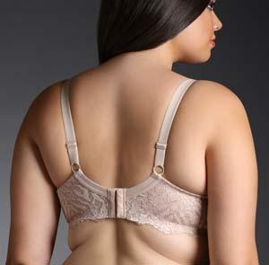 best push-up bra torrid back
