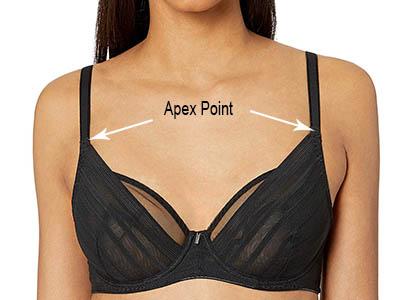 Apex Point